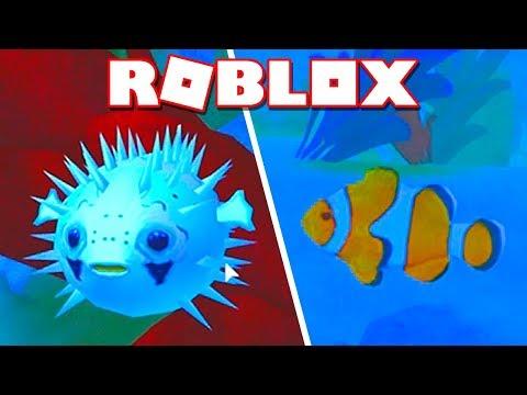 Roblox → SIMULADOR DE VIDA DE PEIXE !! - Roblox Fish Simulator 🎮