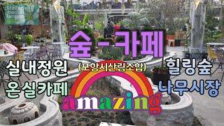 숲카페/실내정원/유리온실정원/♡별꽃농부43원예&…