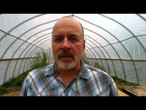 First years organic market garden farming