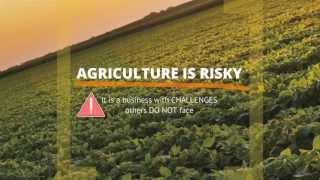 A Shift in U.S. Farm Policy