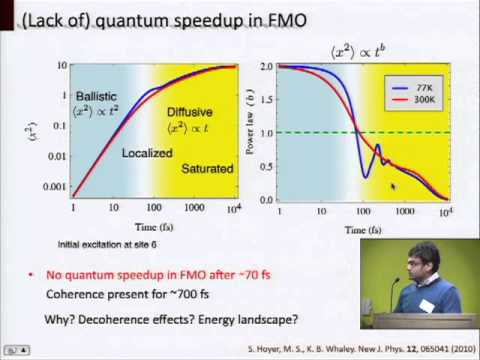 Quantum Mechanics of Photosynthetic Light Harvesting Machinery (Google Workshop on Quantum Biology)