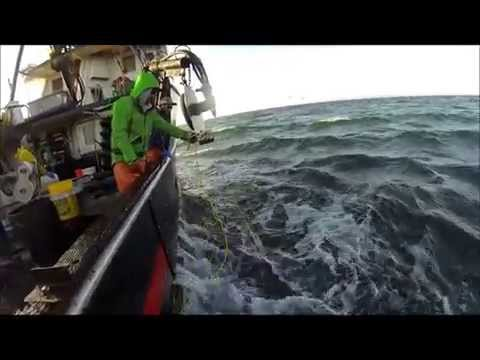 Dungeness Crab Fishing on the Betty Lee