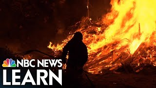 NBC News Learn: The Science of Wildfires thumbnail