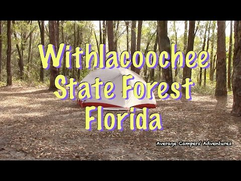 Backpacking Withlacoochee State Forest Florida