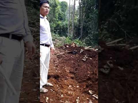 Ironsant mine at kelantan part2