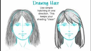 How to Draw Basic Hair (female)