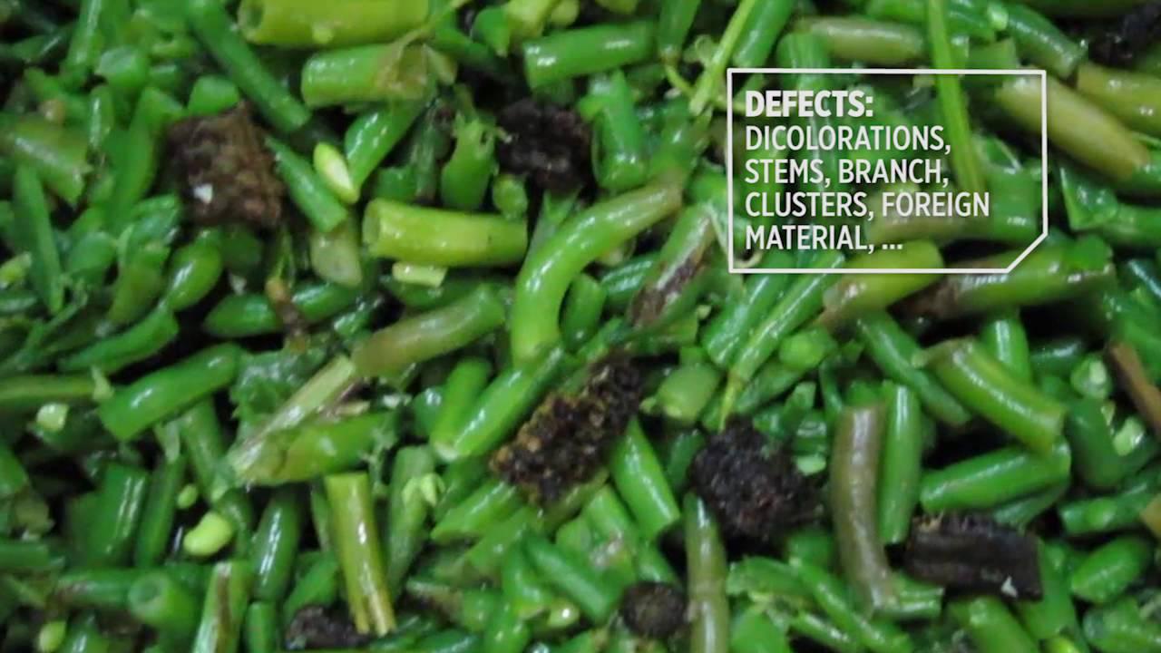Cut green bean sorting machine Genius - TOMRA Sorting