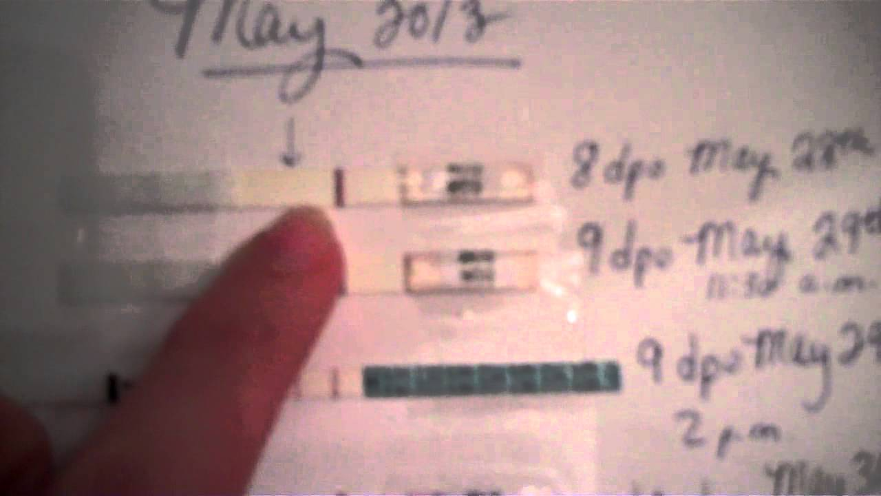 Live Pregnancy test and Live OPK- BOTH POSITIVE!
