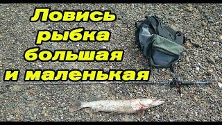 Каменистый берег снова порадовал рыбалкой