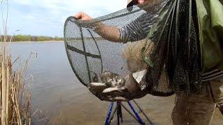 Хороший день на рыбалке Фидер Бердянское водохранилище 03 05 2021