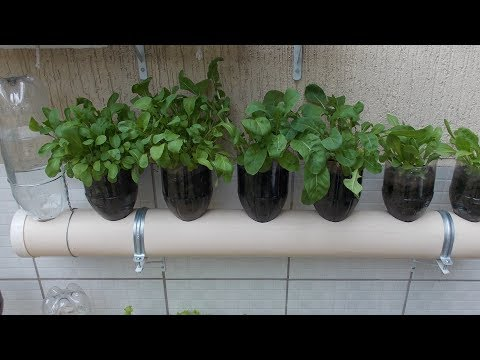 Bottle Garden The Incredible Self Watering Pop Grow System 3