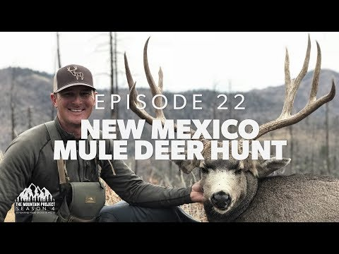 The Drive Paid Off… Big Time!! - Ep.22 - New Mexico Mule Deer Hunt