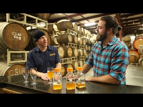 Allagash Brewing + The Great Lost Bear Teaser - Local Brew Ep5 - Coming Soon!