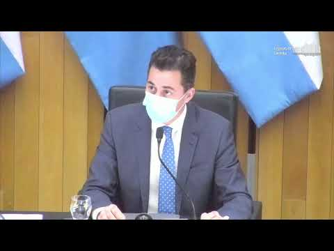 Décima Sesión Virtual - 142 Período Legislativo