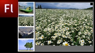 Flash Tutorial: Create an Image Gallery with Enlarging Thumbnails  -HD-
