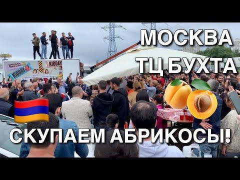 Армяне скупают абрикос ТЦ Бухта Москва