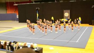 Gothenburg Cheer One Wildcats SM 2014