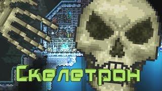 Terraria Как призвать Скелетрона (Skeletron)