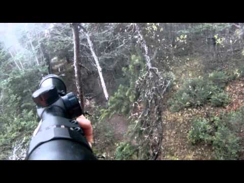 2013 New Brunswick Deer Hunt