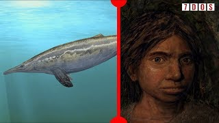 what-denisovans-looked-like-revealed-how-mosasaurs-swam-7-days-of-science