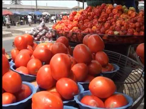 Special Report From Port-Harcourt On Implication of Soot  On Food