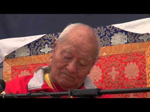 познакомиться тибетцем