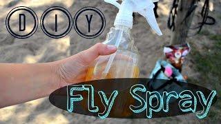 DIY Fly Spray | MyEquineAddiction