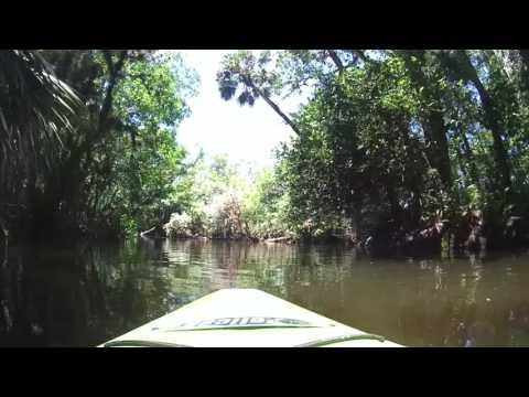 Kayaking Loxahatchee / Riverbend May 7, 2017