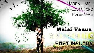 Vanna Aaudaina - Naren Limbu   Cover Song   Prabesh Tiwari