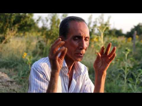 Վանիկ Քեշիշի - Մարդու և բնության ներդաշնակությունը և բնական սնունդը