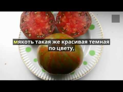 Что будем сажать в 2018 году  Сорта томатов