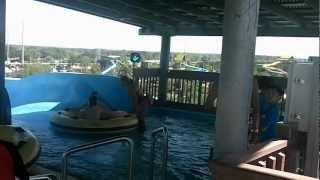 № 2181 США Водный Аттракцион Aquatica Полетели с Горки