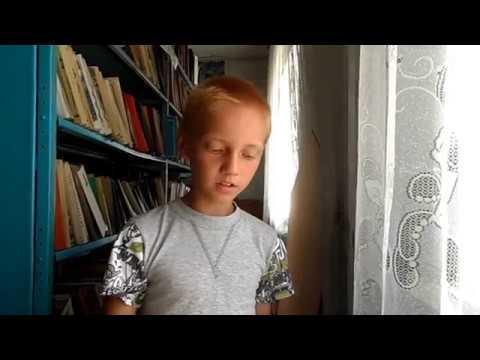 Изображение предпросмотра прочтения – ВладиславПроскуряков читает произведение «Ласточки пропали...» А.А.Фета