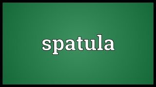 Spatula Meaning