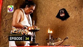 පාලි | Paali Episode 34 |  සතියේ දිනවල  රාත්රී 10.00 ට.. Thumbnail