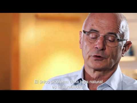 What are the main characteristics of natural gut strings? | Spanish subs