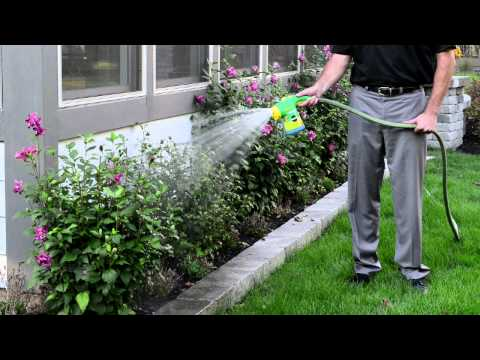 Easy Way to Feed Your Landscape or Garden With Miracle-Gro