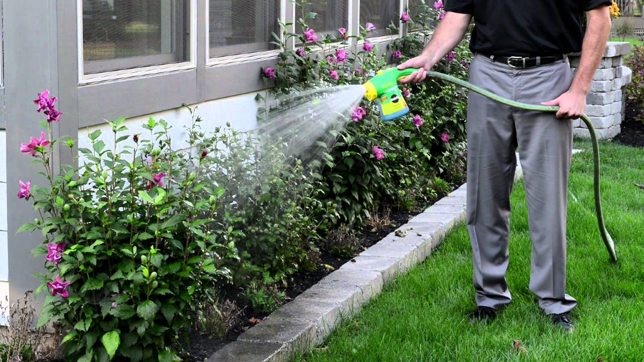 easy way to feed your landscape or garden with miracle gro garden