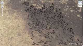 Video 25 Of The Most Bizarre And Unique Finds On Google Earth download MP3, 3GP, MP4, WEBM, AVI, FLV September 2018