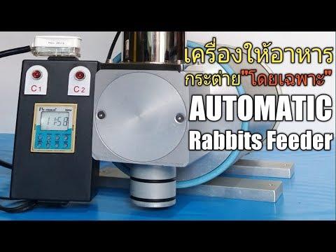 เครื่องให้อาหารกระต่ายอัตโนมัติ | Rabbits Feeder