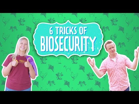 6 Tips for Biosecurity - A Guide for Youth Livestock Exhibitors