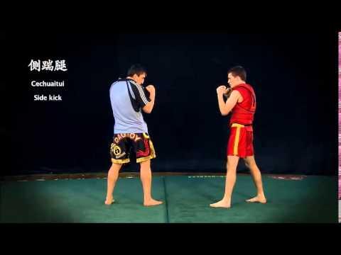 European Wushu Grading System 1st to 4th Duan Wushu Sanda