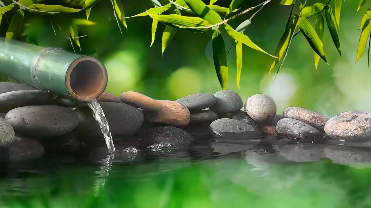 Intente Escuchar Durante 5 Minutos El Sonido De La Fuente De Agua De Bambú Y Se Quedará Dormido