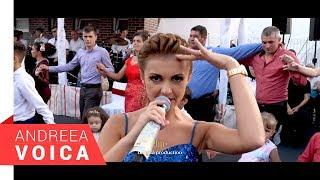 Download Andreea Voica Feat. Stana Izbasa & Papu - Colaj Brauri Live 1
