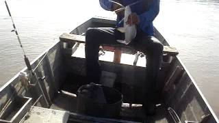 Continuaçao da Barra do Rio Claro GOIAS 2013 Pesca conciente
