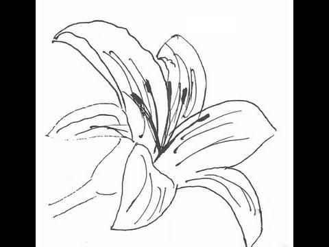 фото нарисовать цветок