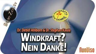 Windkraft? Nein Danke! - Dr. Detlef Ahlborn & Dr. Stephan Kaula bei SteinZeit