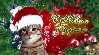 Поздравление С Новым Годом. От кошки #7