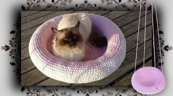 Katzen Kissen Häkeln Anleitung Kostenlos Tvactioninfo