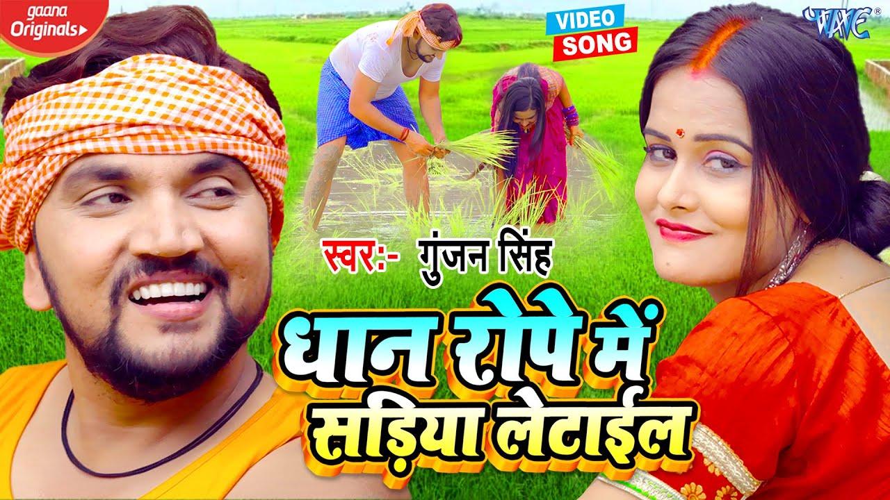 धान रोपे में सड़िया लेटाईल || #Gunjan Singh का नया और सुपरहिट #वीडियो - Dhaan Rope Me Sadiya Letail